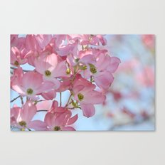 Pretty Dogwood Floral Canvas Print