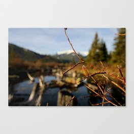 Vermilion Lakes Early Morning - Banff Canvas Print