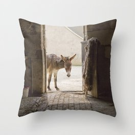 Cute Burro Looking Inside a Doorway Throw Pillow