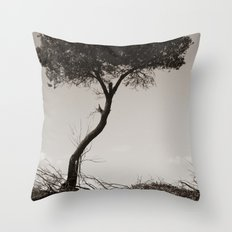 How's the Serenity? Throw Pillow