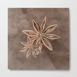 Star Anise Spice Metal Print
