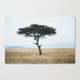 Sunsets in Africa par two Canvas Print