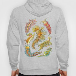 Ernst Haeckel Nudibranch Sea Slugs Hoody