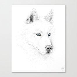 Saber :: A Siberian Husky Canvas Print