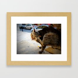 Itchy Framed Art Print