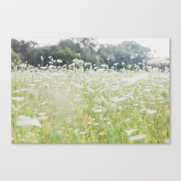 In a Field of Wildflowers Canvas Print