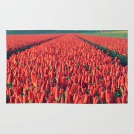 Tulips field #8 Rug