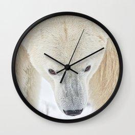 Polar Bear Stare Wall Clock