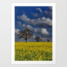 Yellow Field Art Print