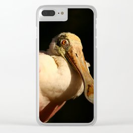 Roseate Spoonbill Portrait Clear iPhone Case