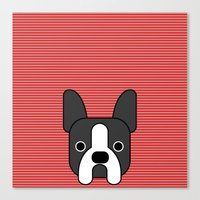 boston terrier Canvas Prints featuring Boston Terrier  by lllg
