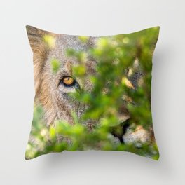 Peekaboo - A Lion Appears Throw Pillow