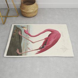 Pink Flamingo from Birds of America (1827) by John James Audubon (1785 - 1851 ), etched by Robert Havell (1793 - 1878) Rug