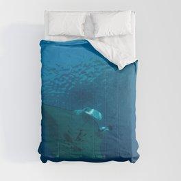 Victory lap (a manta's triumph) Comforters