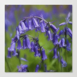 Bluebell Arch Canvas Print
