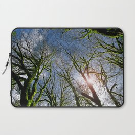 RAIN FOREST MAPLES REACHING FOR THE SKY Laptop Sleeve
