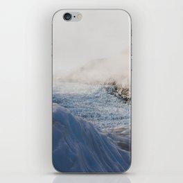 Fox Glacier iPhone Skin