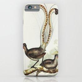 Vintage Print - John Gould - The Birds of Australia (1848) - Lyre Bird iPhone Case