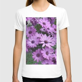 Lilac & Sage Color Purple Daisy Flowers Garden T-shirt