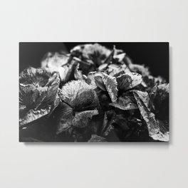 Miguel's Hydrangea 1 Metal Print