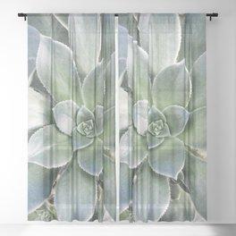 Succulent Photography | Nature | Green Cactus | Floral | Art Print Sheer Curtain