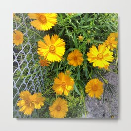Flowers on a Fence Metal Print