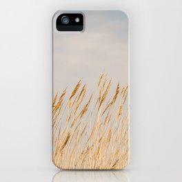 Gold Coast - Sea Oats on Chesapeake Bay iPhone Case