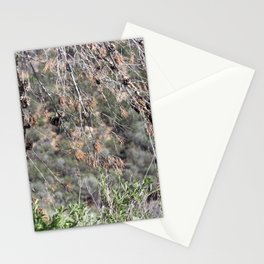 Nature - Trees Stationery Cards