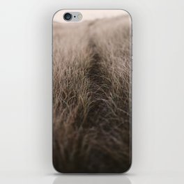 The Path of the Heart iPhone Skin