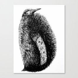 Penguin sketch Canvas Print