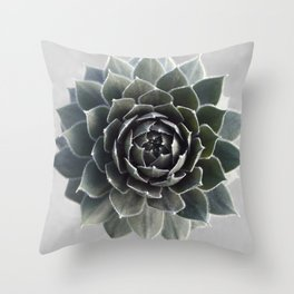 Succulent Photography Nature Plant Green Cactus Floral Art Throw Pillow