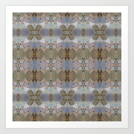 stone lace Art Print