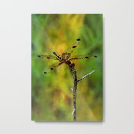 Gold Heart Dragonfly ~ Ginkelmier Inspired Metal Print
