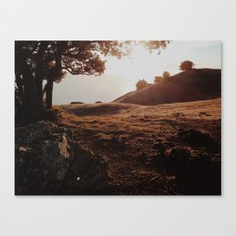 Sunset at Tamalpais Canvas Print