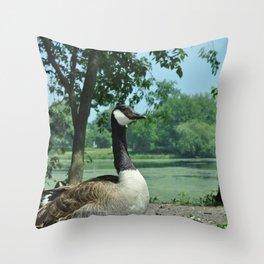 Deluxe Ducks #16 Throw Pillow