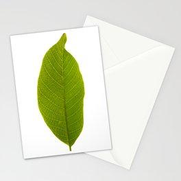 Realistic Vivid Green Leaf Stationery Cards