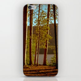 The Pines at Winona iPhone Skin