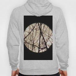 Moon Night 2 Hoody