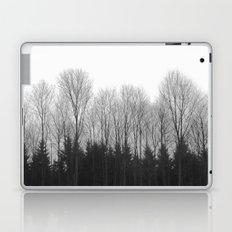 Trees in rows Laptop & iPad Skin
