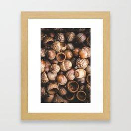 Squirrel Harvest Framed Art Print
