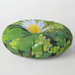 Beautiful Nymphaea Nouchali Lily Pad Flower is Blooming Floor Pillow