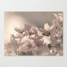 WONDERFUL SPRING Canvas Print