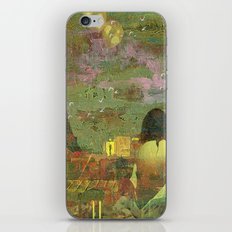 On the roofs of Paris iPhone & iPod Skin
