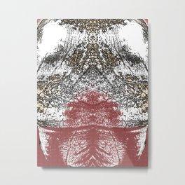 Mirrored abstract image Metal Print