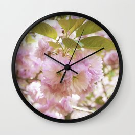 double cherry blossoms with soft hues of pink petals Wall Clock