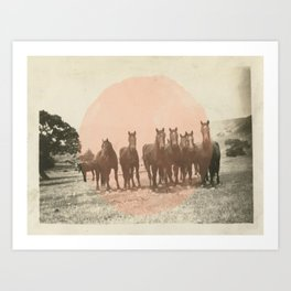 Band of Horses - Peach Art Print