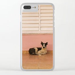 Dog against Pink-Cuba Clear iPhone Case
