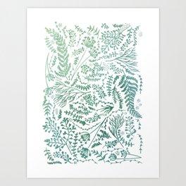 GREEN HERBS Art Print