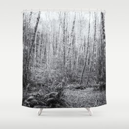 Cottonwoods in the Forest Shower Curtain