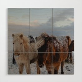 Friends in Iceland Wood Wall Art